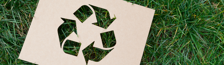 Dit zijn onze duurzame papiersoorten